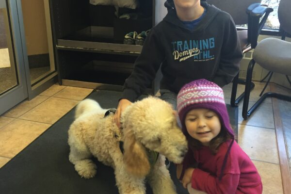"""Abby loves playing with Sadie and Eli Hargrove. Did you know that children benefit from chiropractic care as much as adults? Treatment for children is adapted to their age and smaller frame and is delivered in a gentle manner to which children respond well! Type """"Children"""" in the search box located at the top of our website to find out more!"""