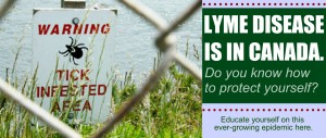 lyme collage