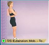thoracic extension mob towel